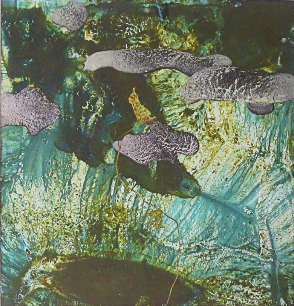 Coastal Path 3 – 40 x 38 – Oil & Acrylic on paper