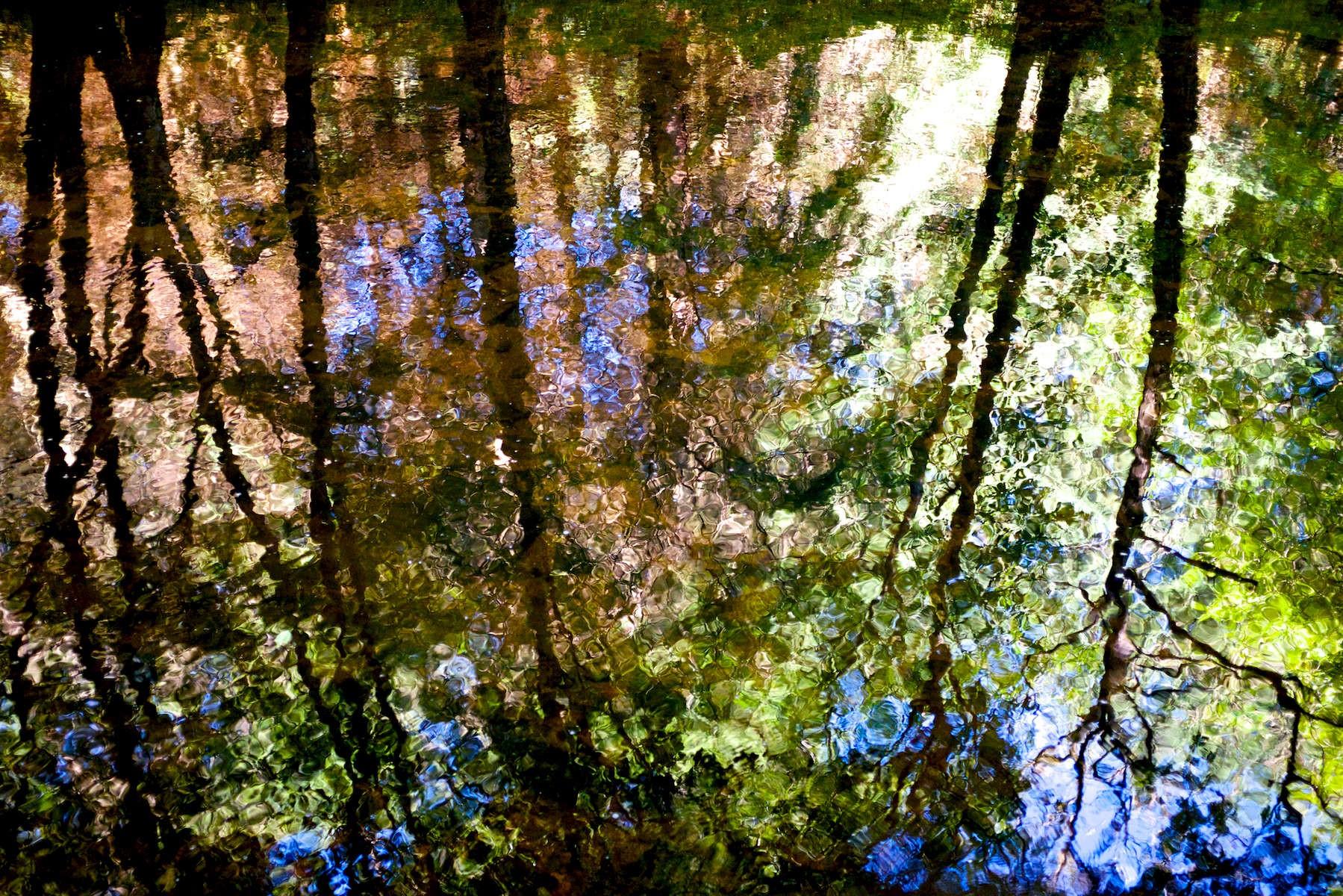 Reflections in the River Teign II Juliette Mills